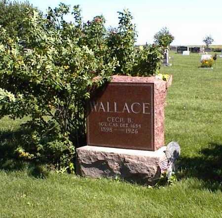 WALLACE, CECIL B. - Jasper County, Iowa | CECIL B. WALLACE
