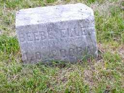WILSON, BEEBE ELLEN - Jasper County, Iowa | BEEBE ELLEN WILSON