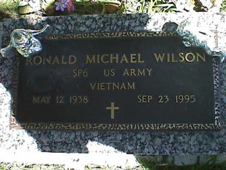 WILSON, RONALD MICHAEL - Jasper County, Iowa   RONALD MICHAEL WILSON