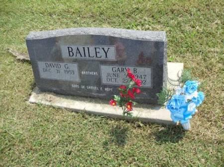 BAILEY, GARY B - Jefferson County, Iowa   GARY B BAILEY