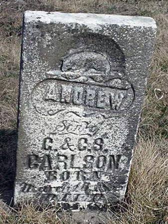 CARLSON, ANDREW - Jefferson County, Iowa | ANDREW CARLSON