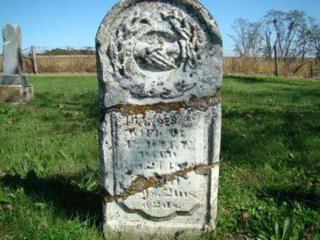 OATMAN DILL, FRANCES E - Jefferson County, Iowa | FRANCES E OATMAN DILL