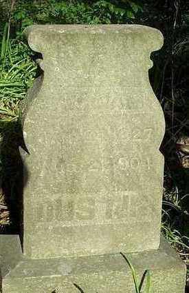 DUSTIN, WILLIAM FLECHER - Jefferson County, Iowa | WILLIAM FLECHER DUSTIN