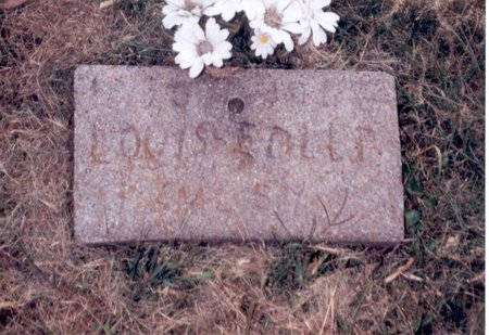 EDLER, LOUIS - Jefferson County, Iowa | LOUIS EDLER