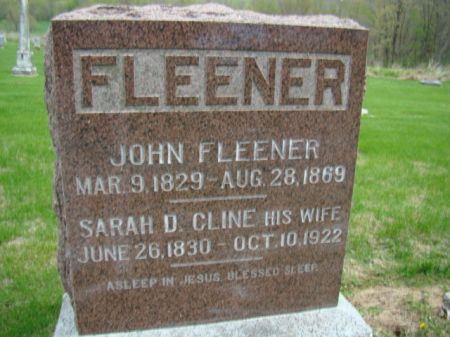 DOWNEY FLEENER, SARAH D - Jefferson County, Iowa | SARAH D DOWNEY FLEENER