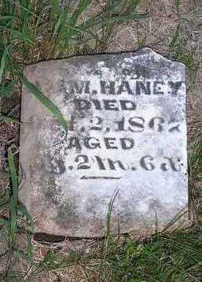 HANEY, WILLIE P. - Jefferson County, Iowa | WILLIE P. HANEY