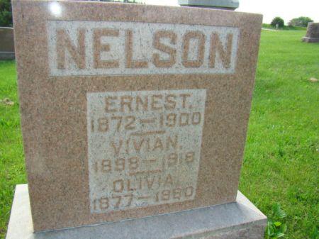 NELSON, ERNEST - Jefferson County, Iowa   ERNEST NELSON