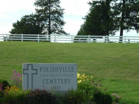 POLISHVILLE, ST. MARY, CEMETERY - Jefferson County, Iowa | CEMETERY POLISHVILLE, ST. MARY