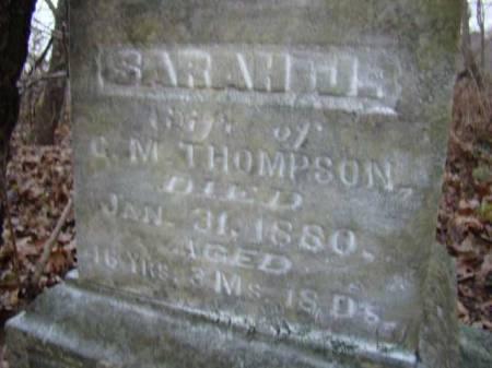 THOMPSON, SARAH J - Jefferson County, Iowa | SARAH J THOMPSON