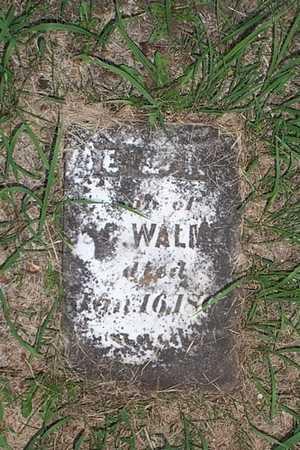 WALMER, ELI - Jefferson County, Iowa | ELI WALMER