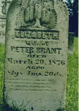 BRANT, ELIZABETH - Johnson County, Iowa | ELIZABETH BRANT