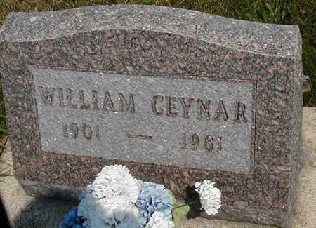 CEYNAR, WILLIAM - Johnson County, Iowa | WILLIAM CEYNAR