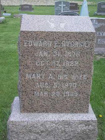 DVORSKY, EDWARD - Johnson County, Iowa | EDWARD DVORSKY