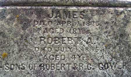 GOWER, ROBERT A. - Johnson County, Iowa | ROBERT A. GOWER
