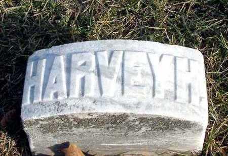 GREEN, HARVEY H - Johnson County, Iowa | HARVEY H GREEN