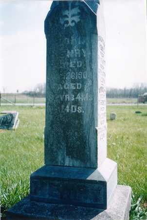 HENRY, JOHN - Johnson County, Iowa   JOHN HENRY