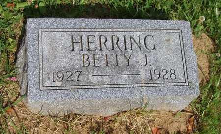 HERRING, BETTY J. - Johnson County, Iowa | BETTY J. HERRING