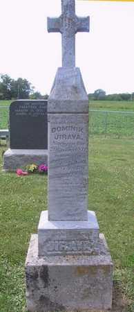 JIRAVA, DOMINIK - Johnson County, Iowa   DOMINIK JIRAVA