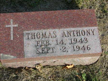 KELLEY, THOMAS ANTHONY - Johnson County, Iowa | THOMAS ANTHONY KELLEY