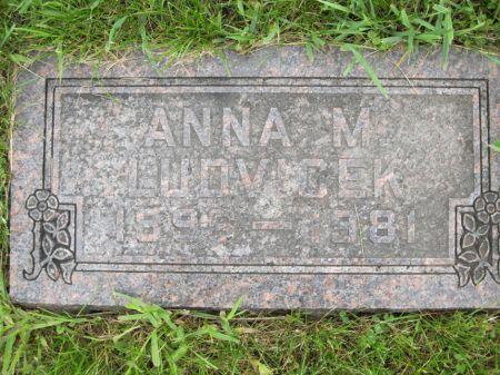 LUDVICEK, ANNA M - Johnson County, Iowa | ANNA M LUDVICEK