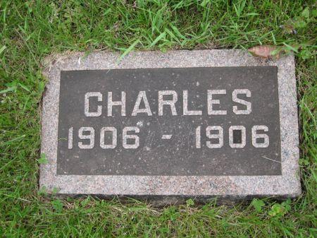 LUDVICEK, CHARLES - Johnson County, Iowa | CHARLES LUDVICEK