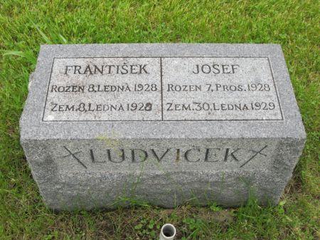 LUDVICEK, JOSEF - Johnson County, Iowa | JOSEF LUDVICEK