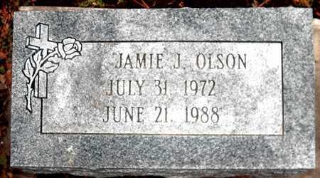 OLSON, JAMIE J - Johnson County, Iowa | JAMIE J OLSON
