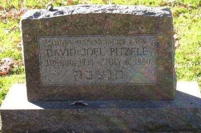 PITZELE, DAVID JOEL - Johnson County, Iowa | DAVID JOEL PITZELE