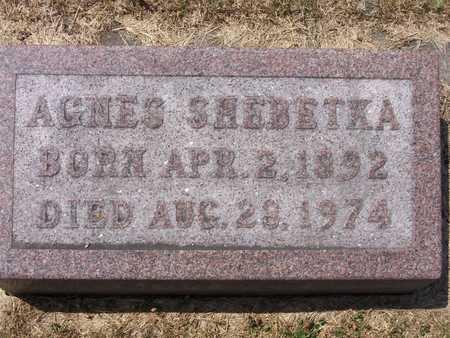 SHEBETKA, AGNES - Johnson County, Iowa | AGNES SHEBETKA