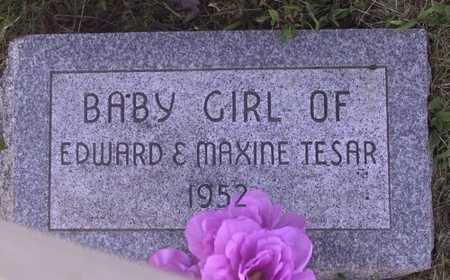 TESAR, BABY GIRL - Johnson County, Iowa | BABY GIRL TESAR