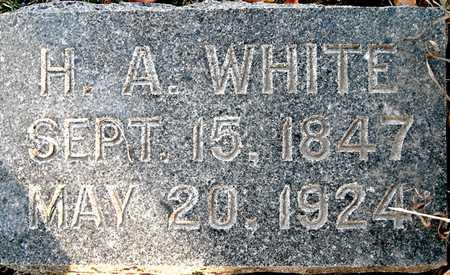 WHITE, H.A. - Johnson County, Iowa   H.A. WHITE