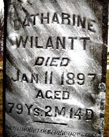 WILANTT, CATHARINE - Johnson County, Iowa | CATHARINE WILANTT