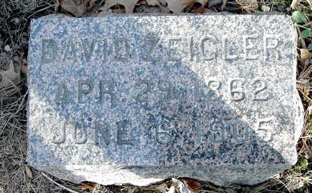 ZEIGLER, DAVID - Johnson County, Iowa | DAVID ZEIGLER