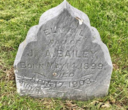 BAILEY, ELMA L. - Jones County, Iowa | ELMA L. BAILEY