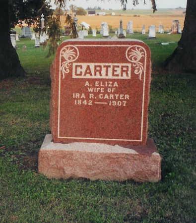 CARTER, ANN ELIZA - Jones County, Iowa | ANN ELIZA CARTER