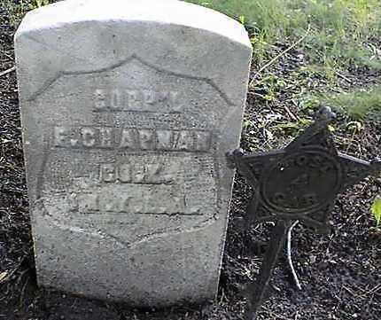 CHAPMAN, CORPORAL F. - Jones County, Iowa | CORPORAL F. CHAPMAN