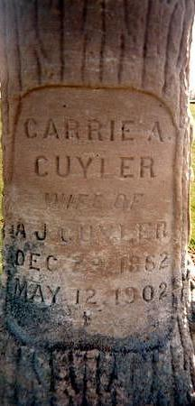 CUYLER, CARRIE A. - Jones County, Iowa | CARRIE A. CUYLER