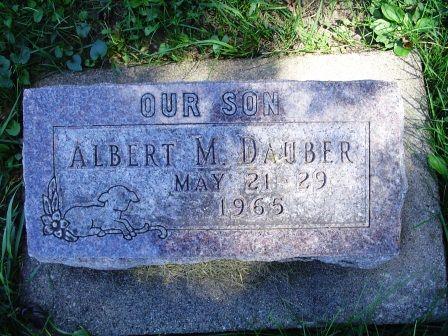 DAUBER, ALBERT M - Jones County, Iowa   ALBERT M DAUBER
