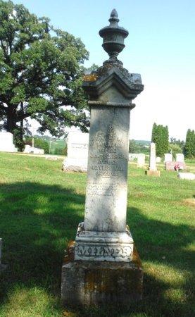 MILNER, GEORGE W. - Jones County, Iowa   GEORGE W. MILNER