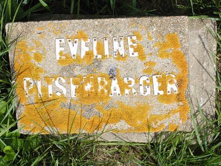 PITSENBARGER, EVELINE - Jones County, Iowa | EVELINE PITSENBARGER