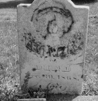 TUBS WELLS, MARY ANN - Jones County, Iowa | MARY ANN TUBS WELLS