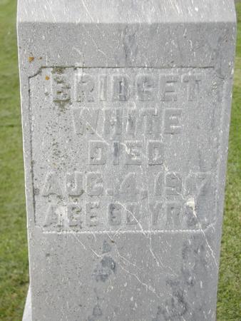 WHITE, BRIDGET - Jones County, Iowa | BRIDGET WHITE