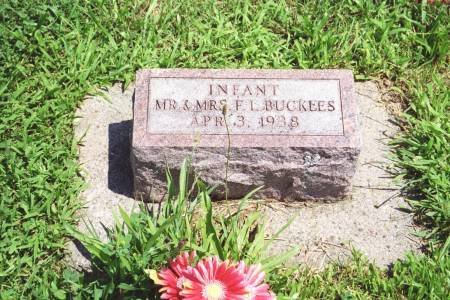 BUCKLES, INFANT - Keokuk County, Iowa | INFANT BUCKLES