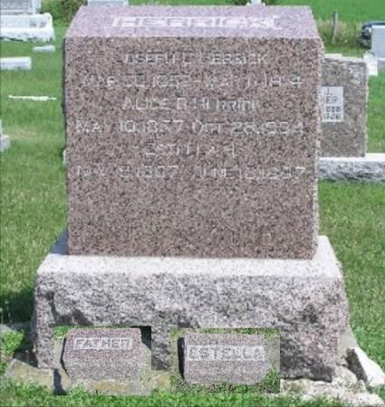 HERRICK, JOSEPH C. - Keokuk County, Iowa | JOSEPH C. HERRICK