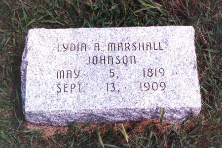 MARSHALL JOHNSON, LYDIA A. - Keokuk County, Iowa | LYDIA A. MARSHALL JOHNSON