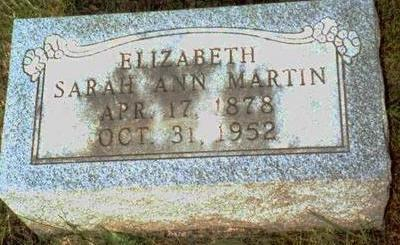 MARTIN, ELIZABETH SARAH ANN - Keokuk County, Iowa | ELIZABETH SARAH ANN MARTIN