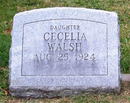 WALSH, CECELIA - Keokuk County, Iowa | CECELIA WALSH