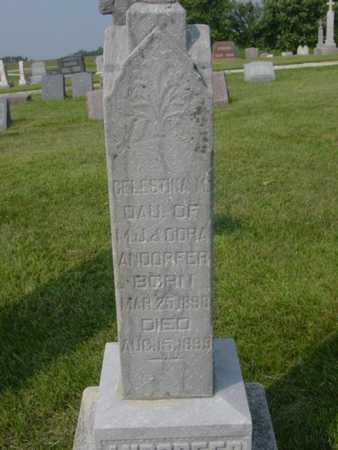 ARNDORFER, CELESTINIA M. - Kossuth County, Iowa | CELESTINIA M. ARNDORFER