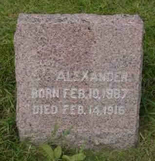 ERDMANN, ALEXANDER - Kossuth County, Iowa | ALEXANDER ERDMANN