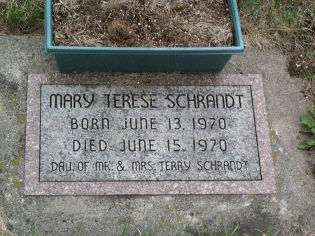 SCHRANDT, MARY TERESE - Kossuth County, Iowa | MARY TERESE SCHRANDT